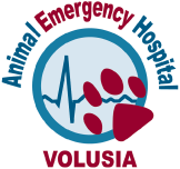 Animal Emergency Hospital Volusia