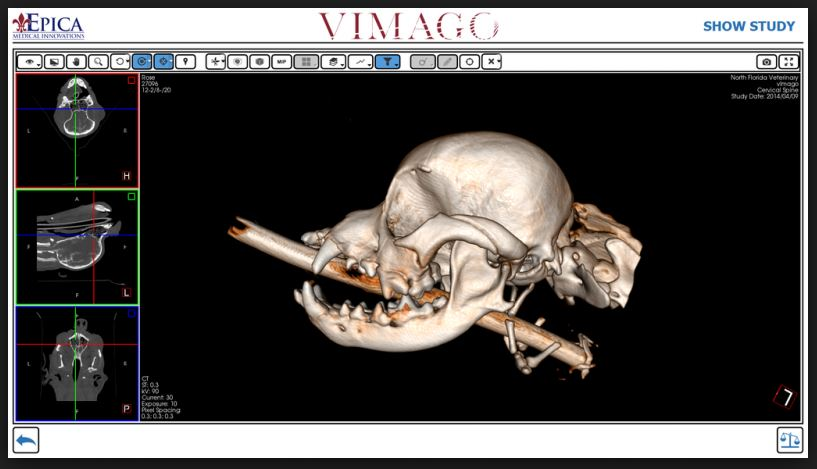 Animal Emergency Hospital Volusia is proud to announce the addition of the Vimago HDVI
